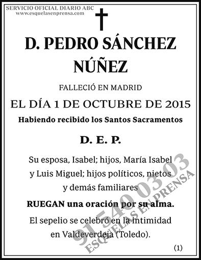 Pedro Sánchez Núñez